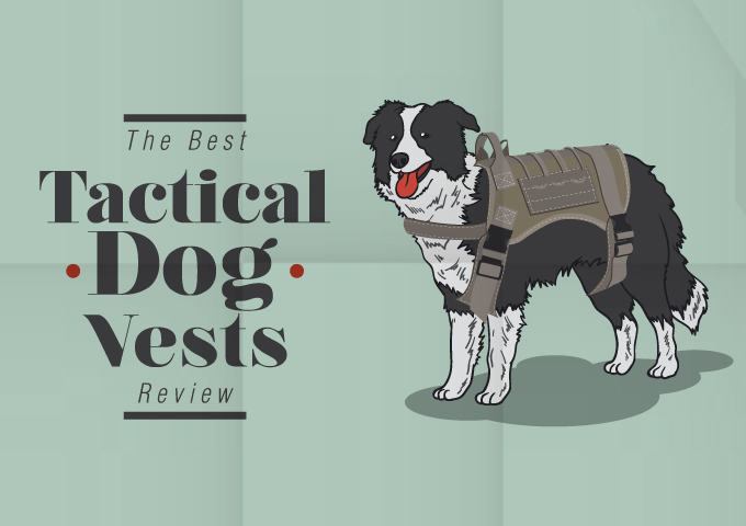 The Best Tactical Dog Vests Review